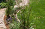 Gartengestaltung von Gärtner Wien